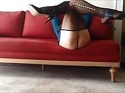 Sexy Turkish Girl Ayse (Sexy Mom)